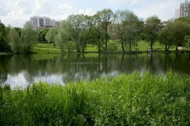 Под Сочи исчезло озеро, но ученые нашли этому вполне естественное объяснение