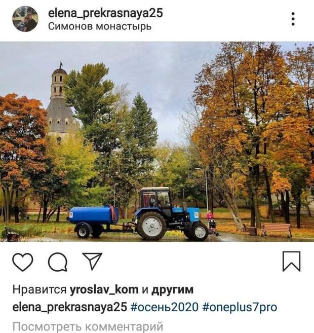 Фото дня: синий трактор в желтой листве
