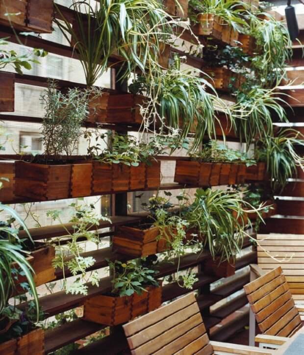 деревянная зеленая стена