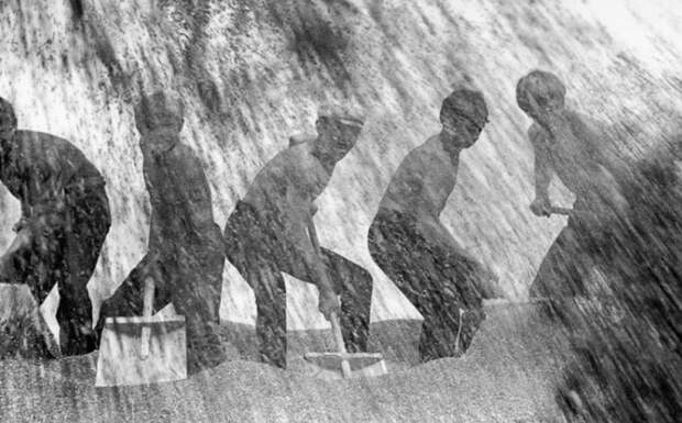 Пятеро мужчин разгребают лопатами зерно, которое сыпется прямо на них.
