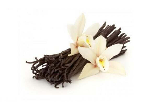Ваниль делает добрее аромат, здоровье, настроение, растения