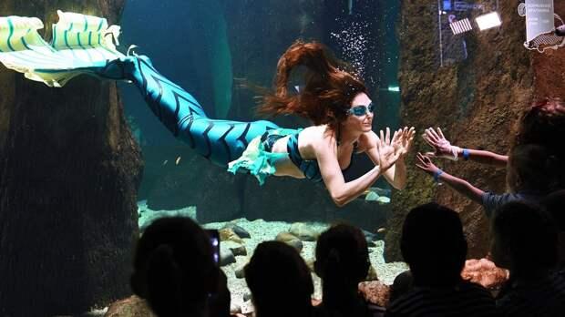 Рыбы вдохновили ученых на изобретение кислородных клизм