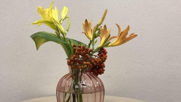 Флорист назвал популярные цветы, которые стоит дарить с осторожностью