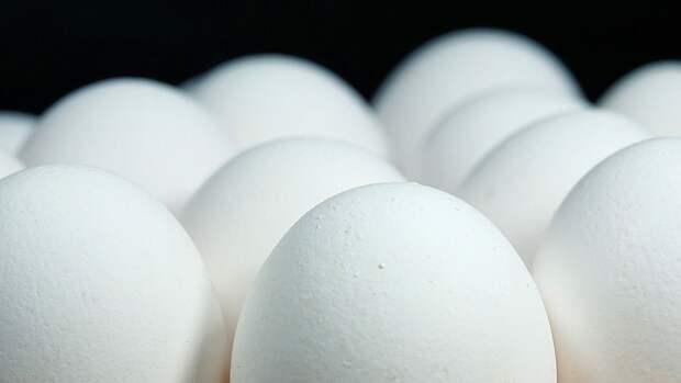 """Россельхознадзор заявил, что для выпуска вакцины от COVID-19 нужны """"чистые"""" куриные яйца"""