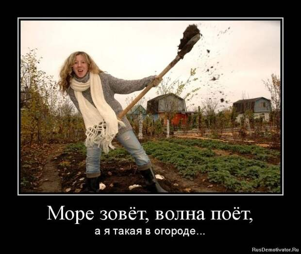 Позитивные демотиваторы для веселья (12 фото)