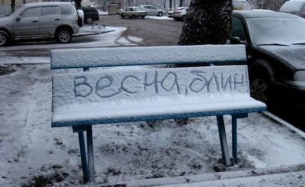 Вот и снег пошел...