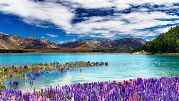 Удивительная красота озера Текапо в Новой Зеландии (Lake Tekapo)