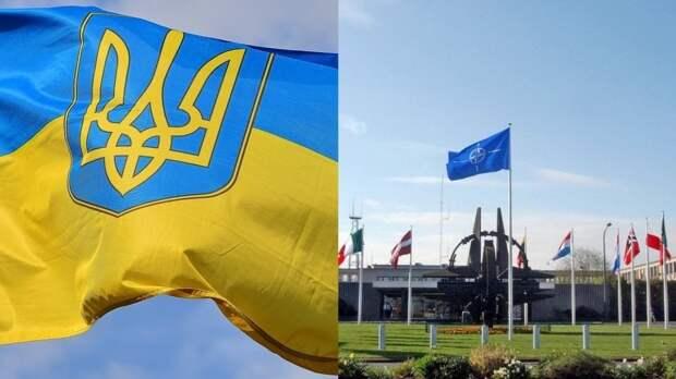 """Киев остался недоволен  """"абстрактными заявлениями"""" о перспективах в НАТО"""