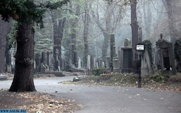Однажды на кладбище
