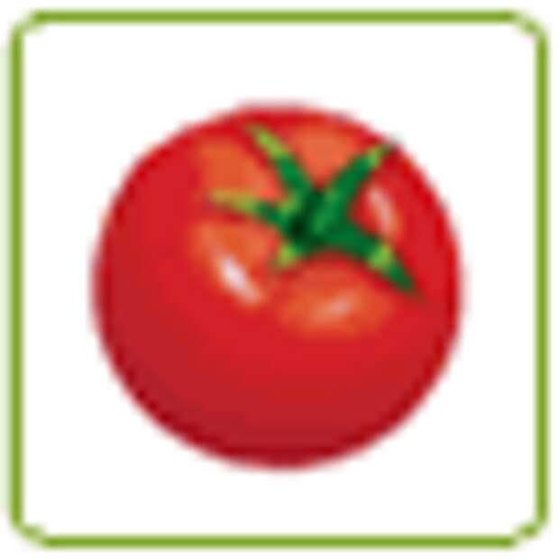 Холодная закуска из свежих помидоров с брынзой и соусом песто