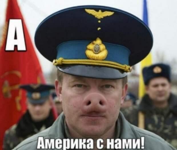Новости стационара- «Сюрприз для России»: на Украине раскрыли цели «бегства» США из Афганистана