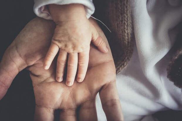 Роддом при ГКБ 24 получил признание молодых родителей