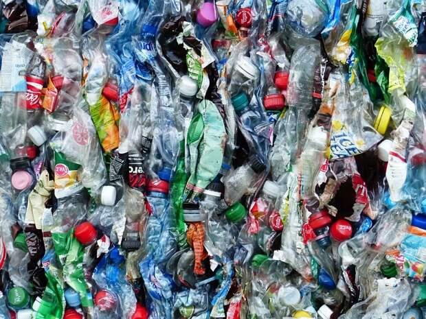 В 2023 году на Кубани откроют мусороперерабатывающие заводы