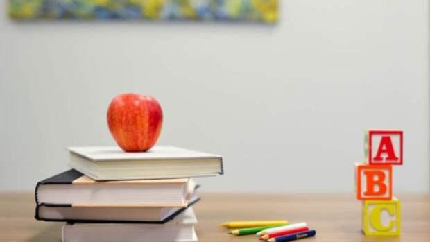 В школах и детсадах Алтайского края усилят меры безопасности
