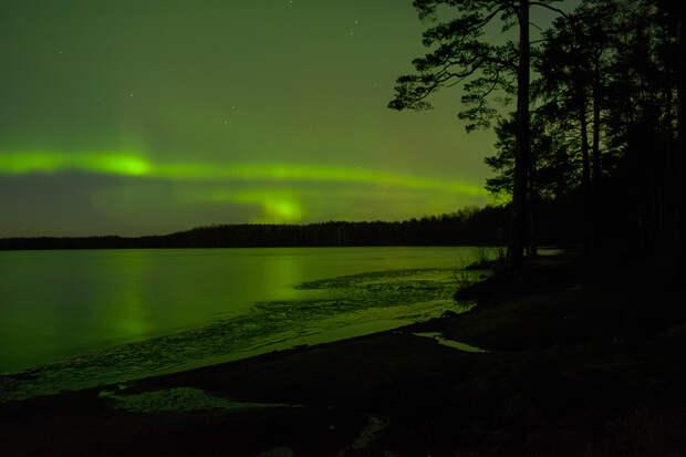 Минувшей ночью жители Ленобласти увидели северное сияние