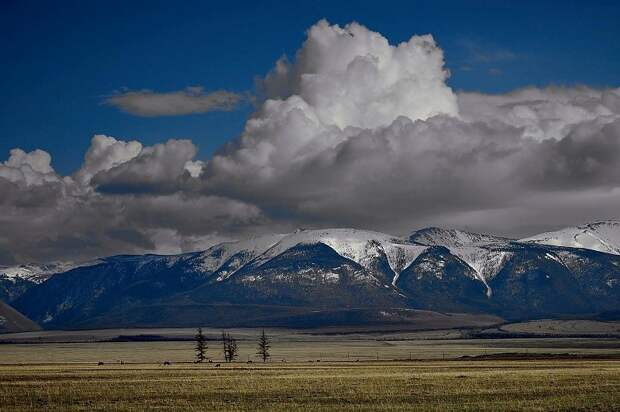 Ближе к природе: экотуризм как способ поднять экономику регионов