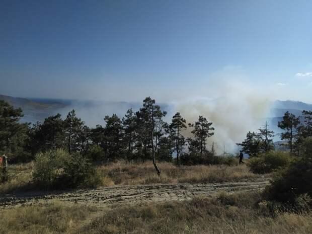 Под Феодосией горят леса