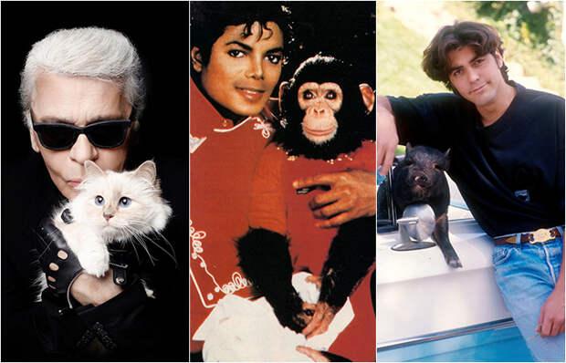 7 знаменитостей, которые без ума от своих питомцев и готовы ради них на многое