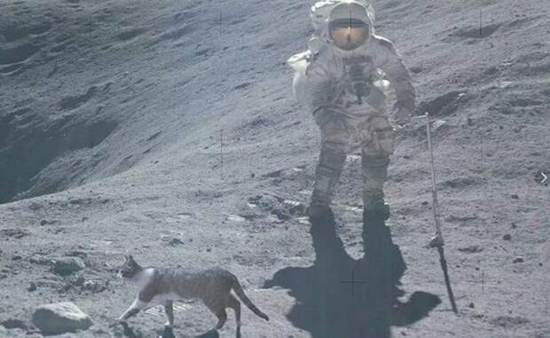 Почему американцы не были на Луне: основная проблема