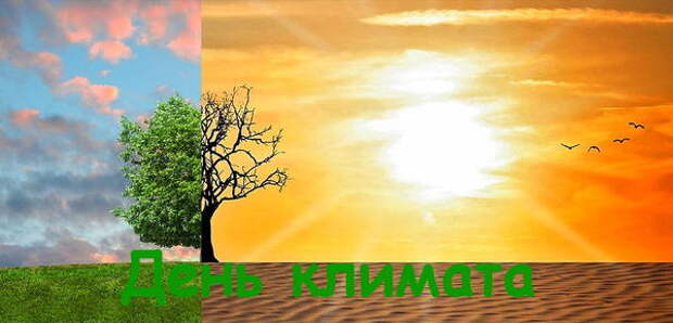 Поздравления для метеорологов с Днем климата на 15 мая 2021 года