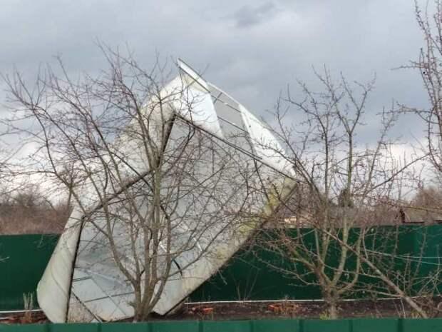 Сильный ураган повалил деревья и выбил окна в Пронском районе
