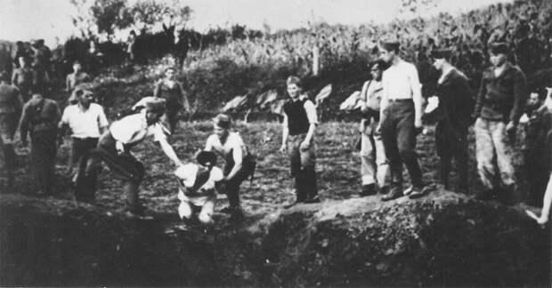 Усташи казнят заключённых в концлагере Ясеновац.