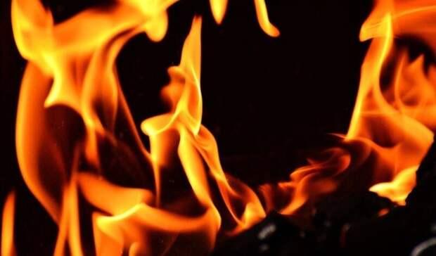 Житель Карелии заживо сжег свою жену