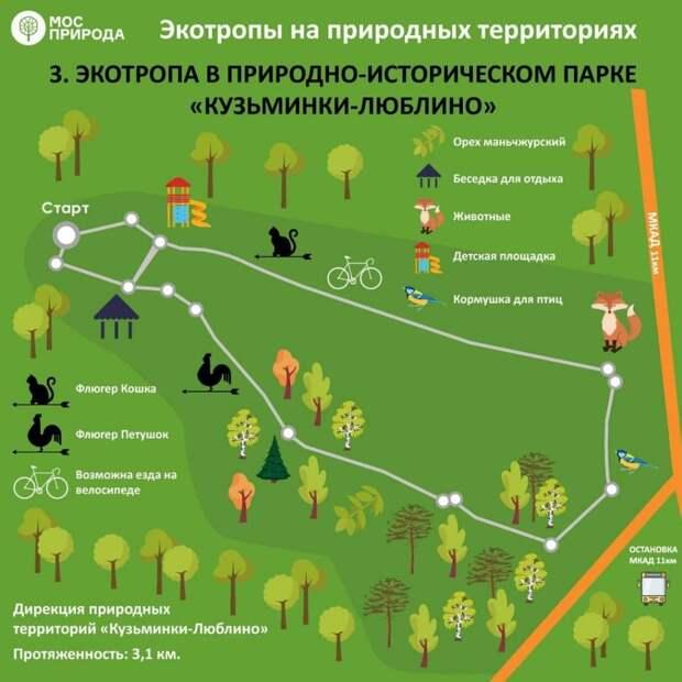 Инфографика / Мосприрода