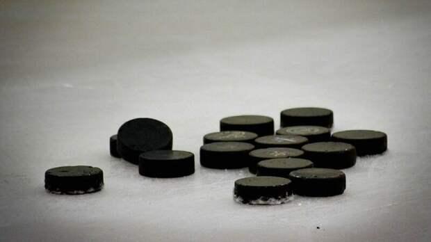 Легенды мирового хоккея могут прилететь в Петербург для участия в матче на льду Невы
