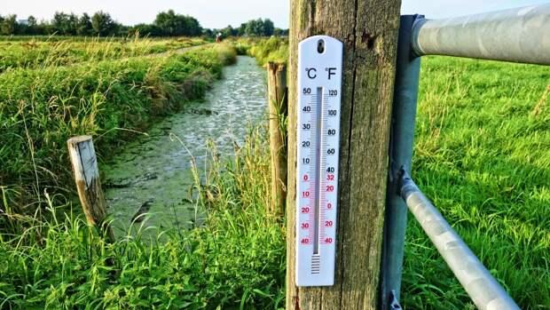 МЧС объявило штормовое предупреждение в Воронежской области из-за жары
