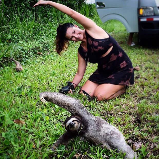 Тренировка на природе животные, йога, милота, прикол, фото