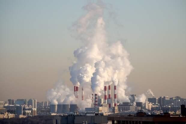 Названа главная экологическая проблема Москвы