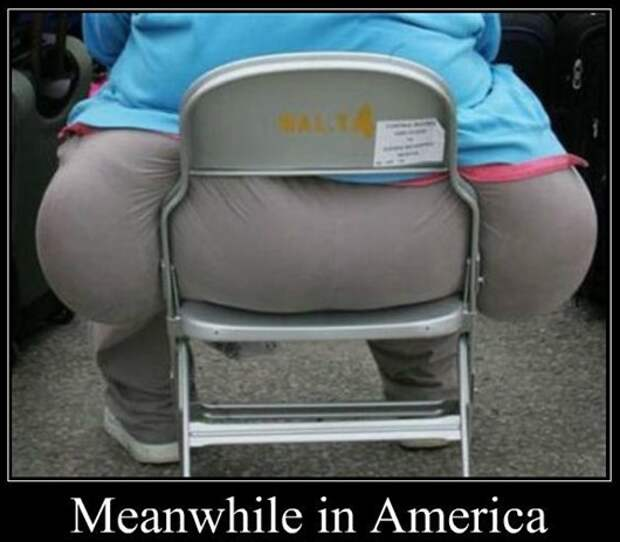 meanwhile-in-america_o_701603