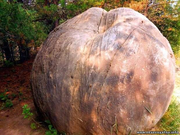 Камни дышат, имеют пульс и способны самостоятельно перемещаться