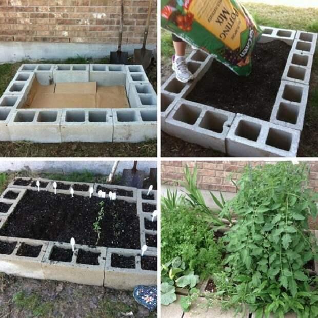 полезные советы дачникам и огородникам