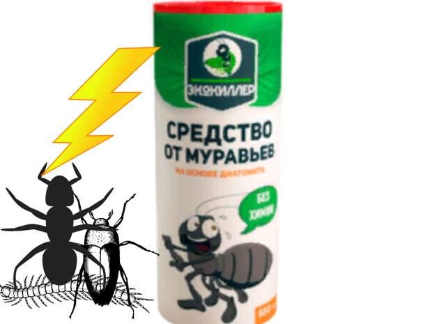 Это простое средство поможет прогнать с участка муравьев за считанные минуты