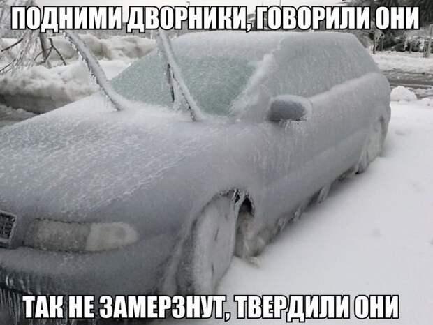 1449147865_avtoprikoly-12