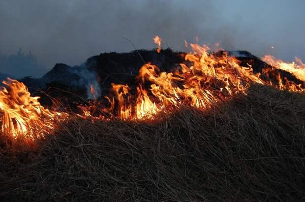 В Удмуртии произошло более 60 природных пожаров