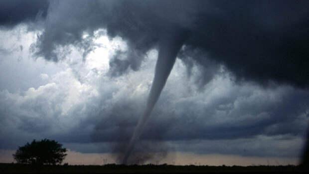 Вильфанд спрогнозировал порывы ветра и дожди в нескольких регионах России