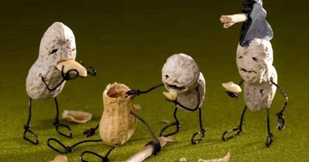 Фото №3 - О вкусных и здоровых мутантах. Как перестать бояться и полюбить продукты с ГМО