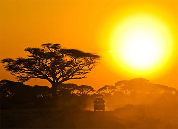 Travel Professional Group планирует отправлять туристов в Кению