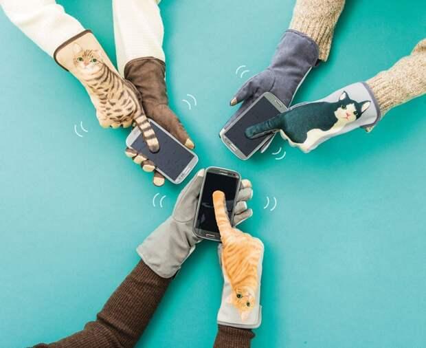 Хвостатые перчатки
