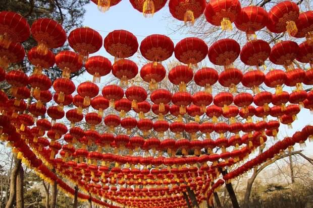 Обследование плотин Удмуртии, Китайский Новый год и гендерные стереотипы в учебниках: что произошло минувшей ночью