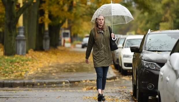 До 12 градусов тепла и дожди ожидаются в Подольске в пятницу