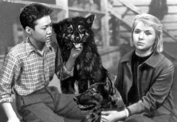 Кадр из фильма *Дикая собака Динго*, 1962 | Фото: liveinternet.ru