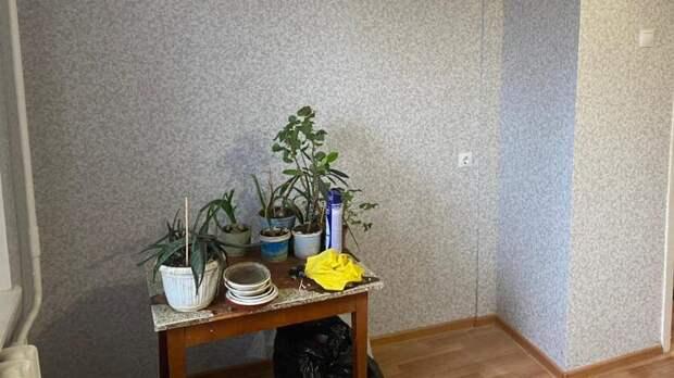 ВСтаврополе отремонтировали затопленную соседями квартиру ветерана ВОВ