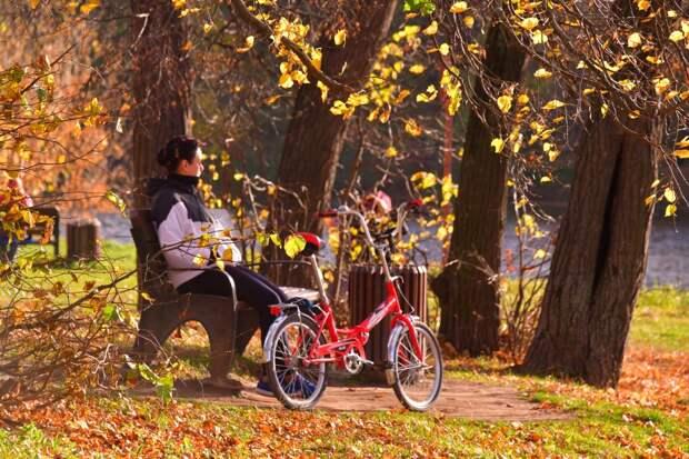 Экотропу для осенних прогулок проложили в парке «Кузьминки-Люблино»