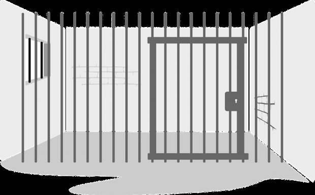 Вора в законе, устроившего бунт в СИЗО на Выборгской, приговорили к девяти годам тюрьмы