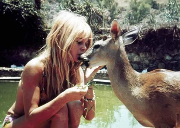 Брижит Бардо и животные (33 фото)
