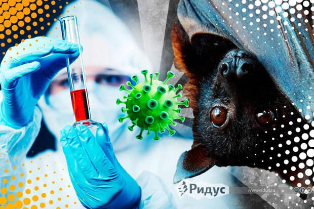 Европейские вирусологи доказали лабораторное происхождение COVID-19